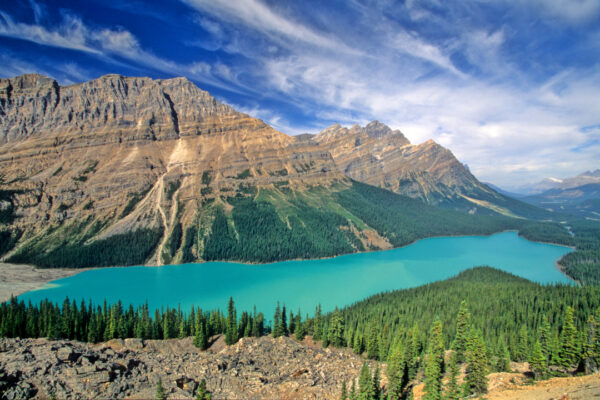 Peyto Lake, Alberta Canada