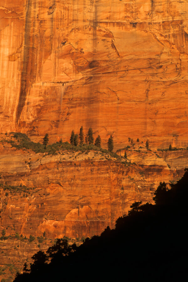 Zion Wall, Zion Nation Park Utah