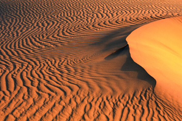 Sand dune Sunset, Sonoran Desert, California