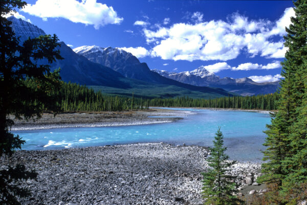 Blue River, Canadian Rockies, Alberta Canada