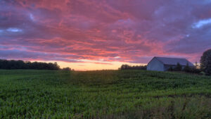 Cornfield Sunset, Upstate New York.